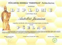 1-diploma-jan